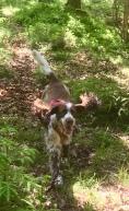 Glada Hjördis, nöjd med att ha hittat sin matte gömd i skogen.