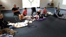 Nu är det föreläsning av Cilla Cannebrheim som driver Cannstaffs kursgård, hundarna kopplar av <3