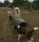 Linnea och Charlie och Nizze