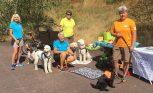 Hundförare Annika, Ingegerd, jag och Marie och Katarina bakom kameran. Dagens arbetande hundar Hjördis, Mitzy, Svante, Saga och Molly som samlade pengar till Hjärnfonden.