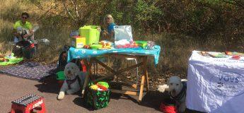 Ännu en varm dag, några hundar vilar i skuggan mesans några träffar besökare. Bra när man kan turas om med sina kompisar.