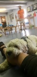 coola Hubbe vilar lite i mattes knä