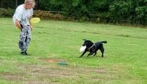Sienna var dagen talang på Dogsfrisbee