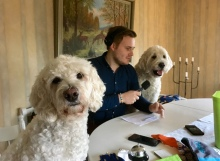 Läshundarna Saga och Charlie pratar med Oskar Elving Söderström från P4 om hur det är att ha uppdrag som läshundar.
