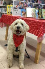 Charlie framför en bild på sig själv och på bordet finns endast böcker om hundar =)