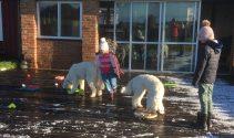 Milia och Linnea gjorde en bana med klurigheter för hundarna att leta godis i.