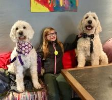 Mysig em på Cortado coffeshop, ett hundvänligt fik i Halmstad