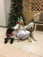 Bella social tjänstehund under utbildning, Milia vårt barnbarn och Vårdhunden Charlie. Detta är en favoritbild <3