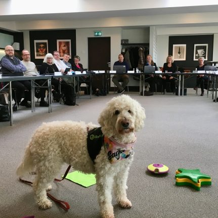 Vårdhunden Saga har visat lite vad Vårdhunden gör på arbetet för Hemvårdsnämnden.
