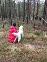 Längesedan Charlie var med på sök i skogen. Första fick han se när figgen försvann i skogen.