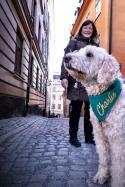 Denna coola bild på Charlie och mig är tagen i Gamla stan av en fotograf på fotokurs.