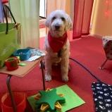 Läshunden Charlie väntar på eleverna.