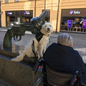 Vårdhunden Charlie på jobb och favoritstaty
