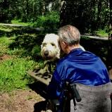 Vårdhunden Charlie