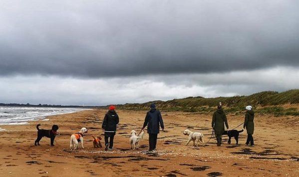 på stranden i duggregn med bästa gänget