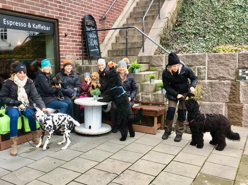 Hela gänget samlat utanför Cortado coffeshop där vi sen gick in och fikade tillsammans. Grace, Basse, Tintin, Rufus och Ellen heter valparna