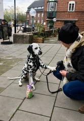 Grace var nöjd med goodiebagen från Dogz