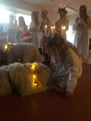 Vårdhunden Charlie och lucian Milia