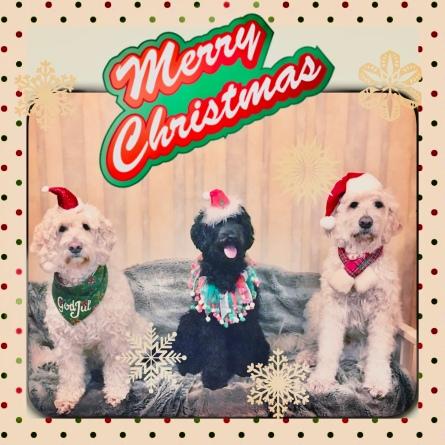 God Jul önskar vi till er Alla! Saga, Ellen och Charlie