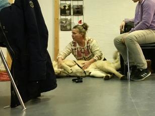 Lena-Maria visar HLR för hund, hjärt lungräddning, på kafét allra största gäst idag, som går riktigt in i karaktär