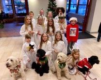 Hela lussegänget 2019 med barn och hundar, Halmstad