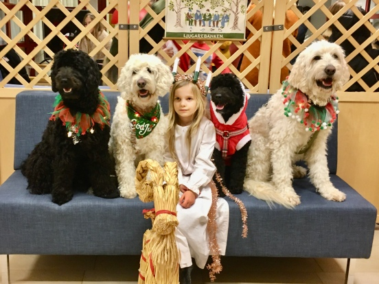 Ellen, Saga, Milia, Bella och Charlie <3