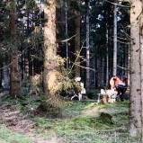 Skogsaktivering med Trygga tassen på Nyårsafton.