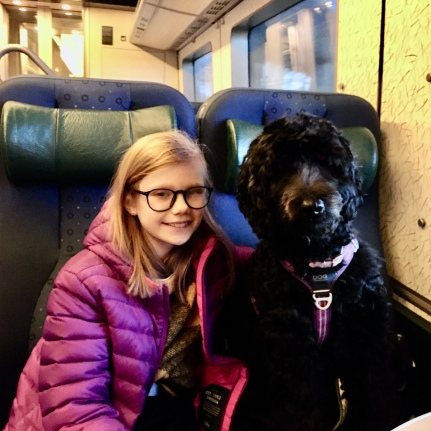 Linnea och Ellen på tåget till My Dog 2020